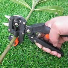 Tree Cutting Pruner