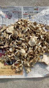 Organic Dried Mushroom