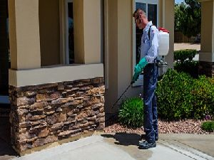 Residential Pest Control Service
