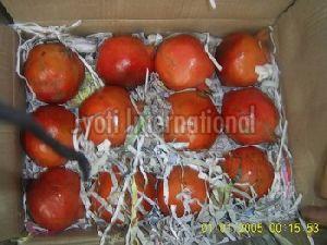 Red Delicious Pomegranate