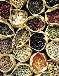 organic vegetable seeds