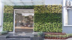 Vertical Green Wall Garden