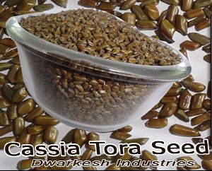 HERBAL CASSIA TORA SEED