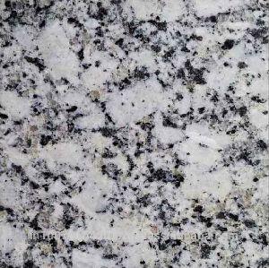 P White Indian Granite