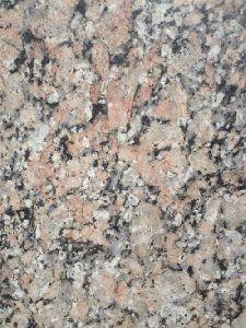 Panchalwara Indian Granite