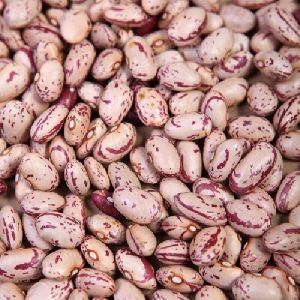 Organic Speckled Kidney Beans