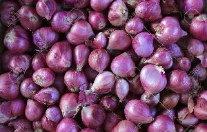 Red Small and Sambar Onion