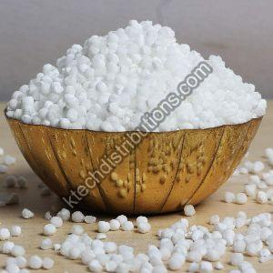 Sago Seeds