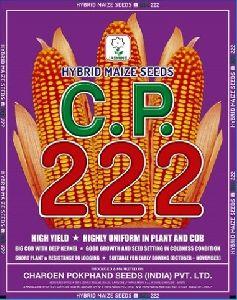 C.P. 222 Hybrid Maize Seeds