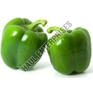 Fresh Green Capsicum