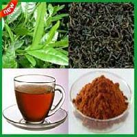 Darjeeling Tea Powder