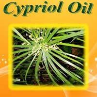 Bulk Cypriol Oil