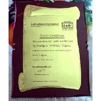 Wooden Golden Certificate - Patrika - Lubi