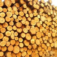 Yellow Pine Wood Logs