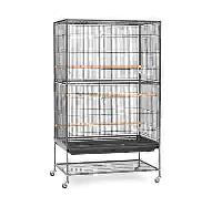 Poultry Bird Cage