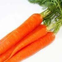 Fresh Red Carrot