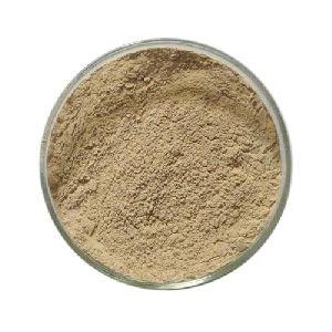 Coffee Bean Powder