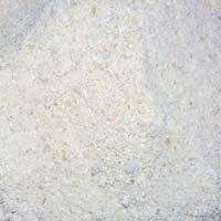 Chicory Raw Powder