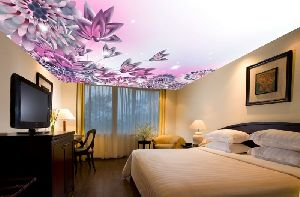 3D Ceiling Designing Services
