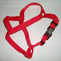 Dog Body Belts