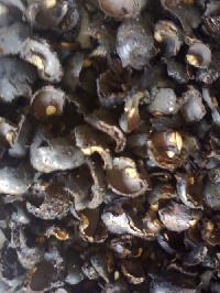 Raw Cashew Shell