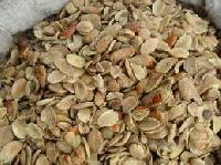 Free Sample Bush Mango Seed Extract
