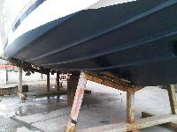 Fevicol Antifouling Paints