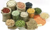 Agri Seeds