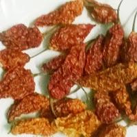 Dried Bhut Jolokia Chilli