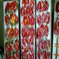 Anthurium Flowers