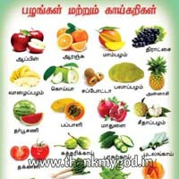 Fruits & Vegetables Chart in Tamil