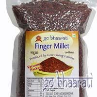 Finger Millet