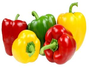 Fresh Bell Peppers