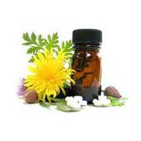 Herbal Calcium Supplements