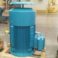 Vertical Electric Motor
