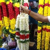 Fresh Decorative Flowers