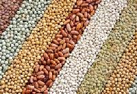 Food Grains