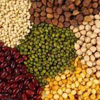 Pulses And Cereals