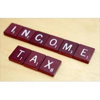 Income Tax Consultant
