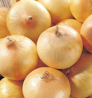 Fresh Yellow Onions