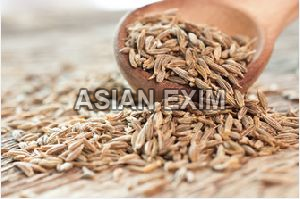 Cumin Seed Machine Cutting
