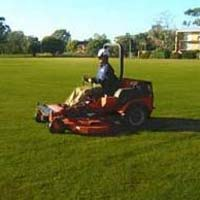 Lawn Maintenance Services
