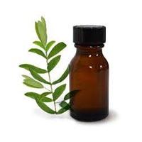 Tea Leaf Oil