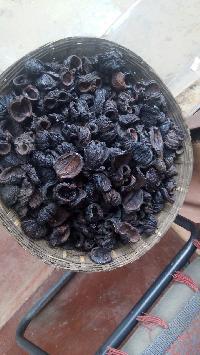Garcinia Cambogia Kodampuli