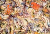 Frozen Green Mussel (kallumakai)