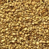 Natural Sesame Seeds