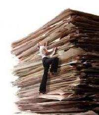 On Site Paper Shredding Service