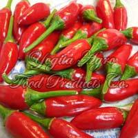 Red Bullet Chilli