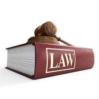 Company Law Services