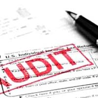 Statutory Audit Assurance Services